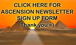 Newsletter Sign Up form.