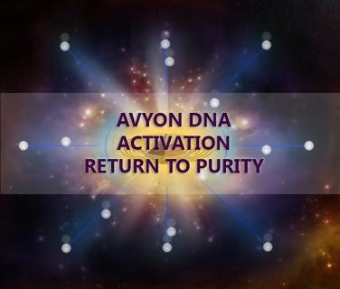 avyon1