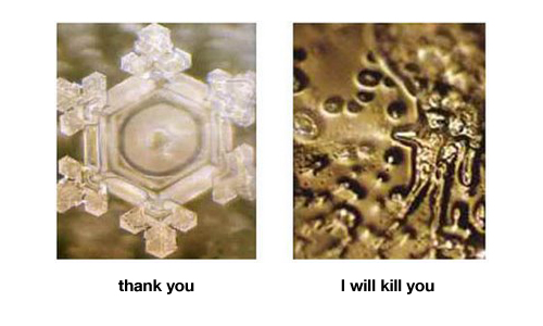 water-words-emoto